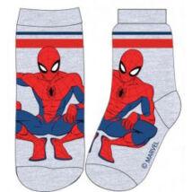 Pókember szürke zokni (23-34)